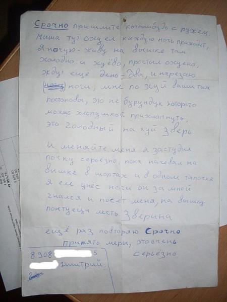 __storoza_18222641_b
